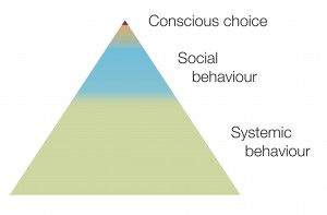 behaviour pyramid